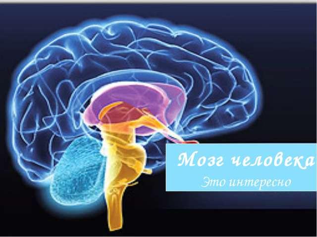 Мозг человека Это интересно