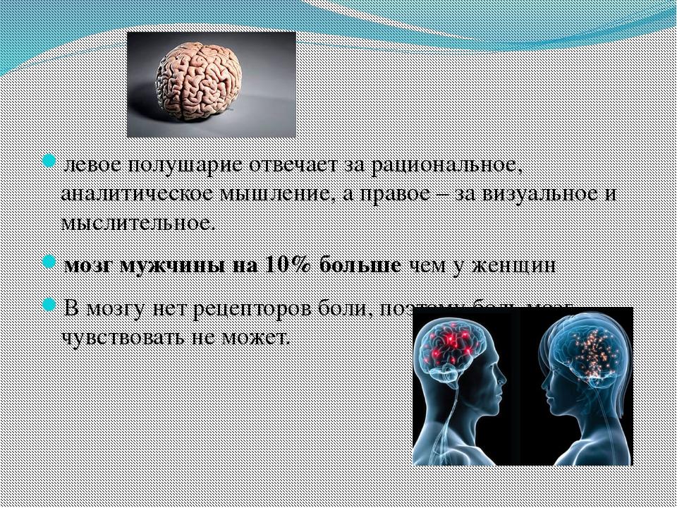 левое полушарие отвечает за рациональное, аналитическое мышление, а правое –...