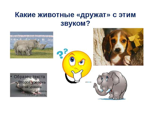 Какие животные «дружат» с этим звуком?