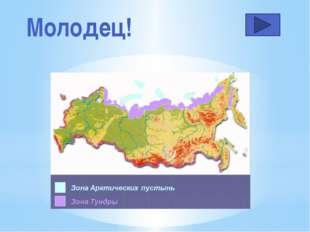Зима в тундре… Непродолжительная и нехолодная Долгая и очень суровая (-50°С)