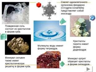 Скелет одноклеточного организма феодарии (Circjgjnia icosahtdra) представляет