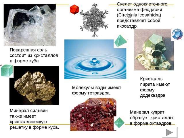 Скелет одноклеточного организма феодарии (Circjgjnia icosahtdra) представляет...