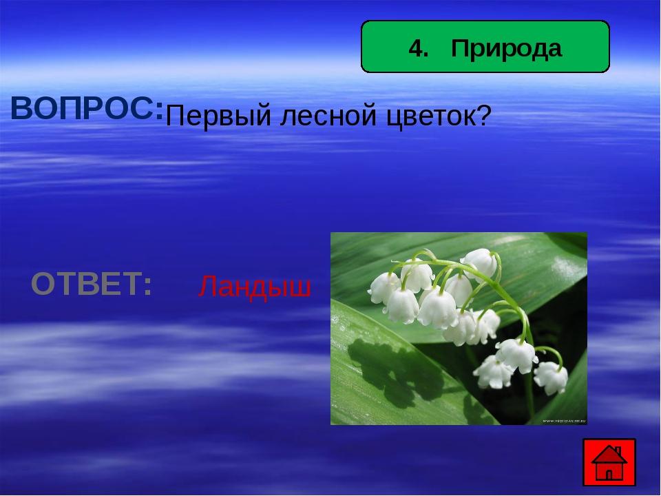 7. Предметы быта ВОПРОС: *Аппарат, по которому можно поговорить с другом, ко...