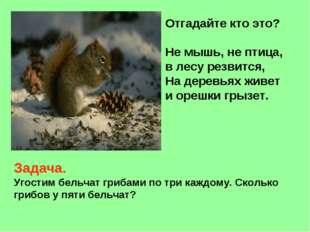 Отгадайте кто это? Не мышь, не птица, в лесу резвится, На деревьях живет и ор