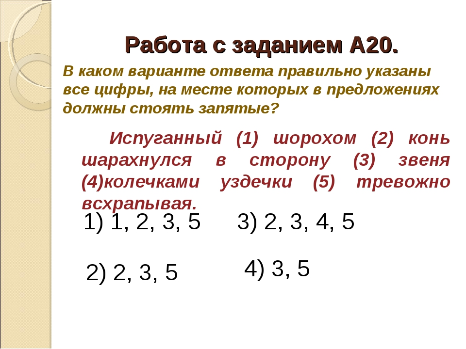 Работа с заданием А20. Испуганный (1) шорохом (2) конь шарахнулся в сторон...