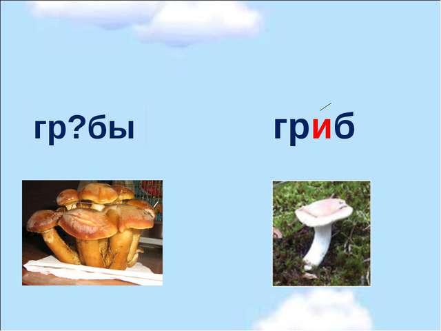 гр?бы гриб и