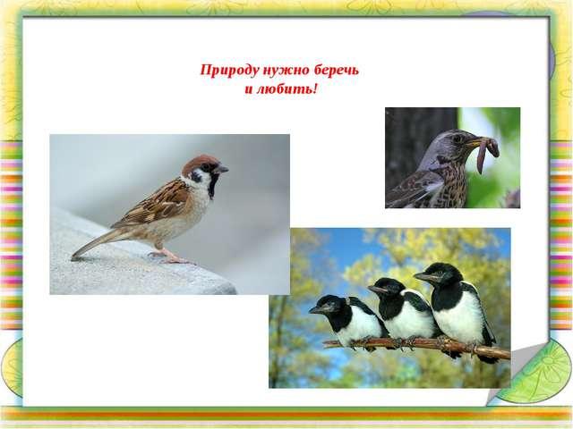 Природу нужно беречь и любить!