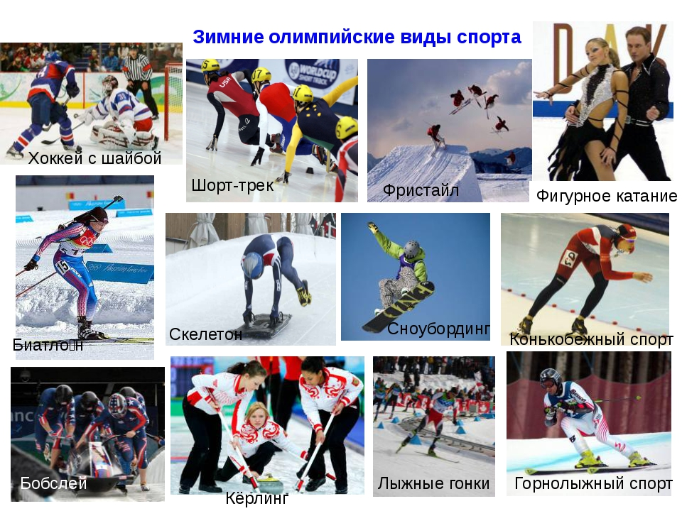Зимние олимпийские виды спорта Шорт-трек Сноубординг Фристайл Скелетон Биатл...