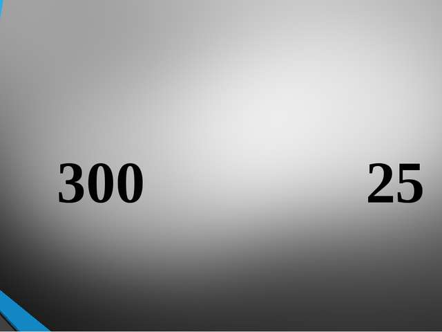 300 25