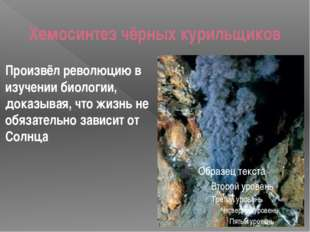 Хемосинтез чёрных курильщиков Произвёл революцию в изучении биологии, доказыв