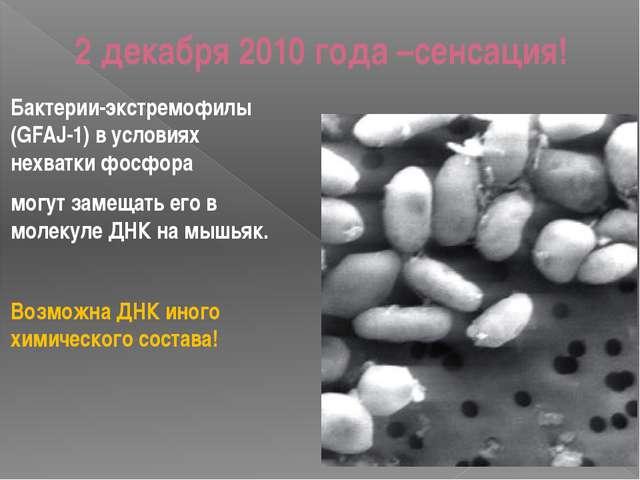 2 декабря 2010 года –сенсация! Бактерии-экстремофилы (GFAJ-1) в условиях нехв...