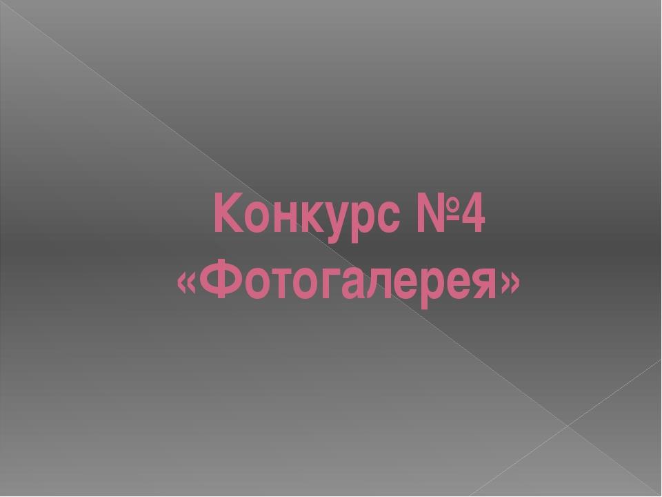 Конкурс №4 «Фотогалерея»