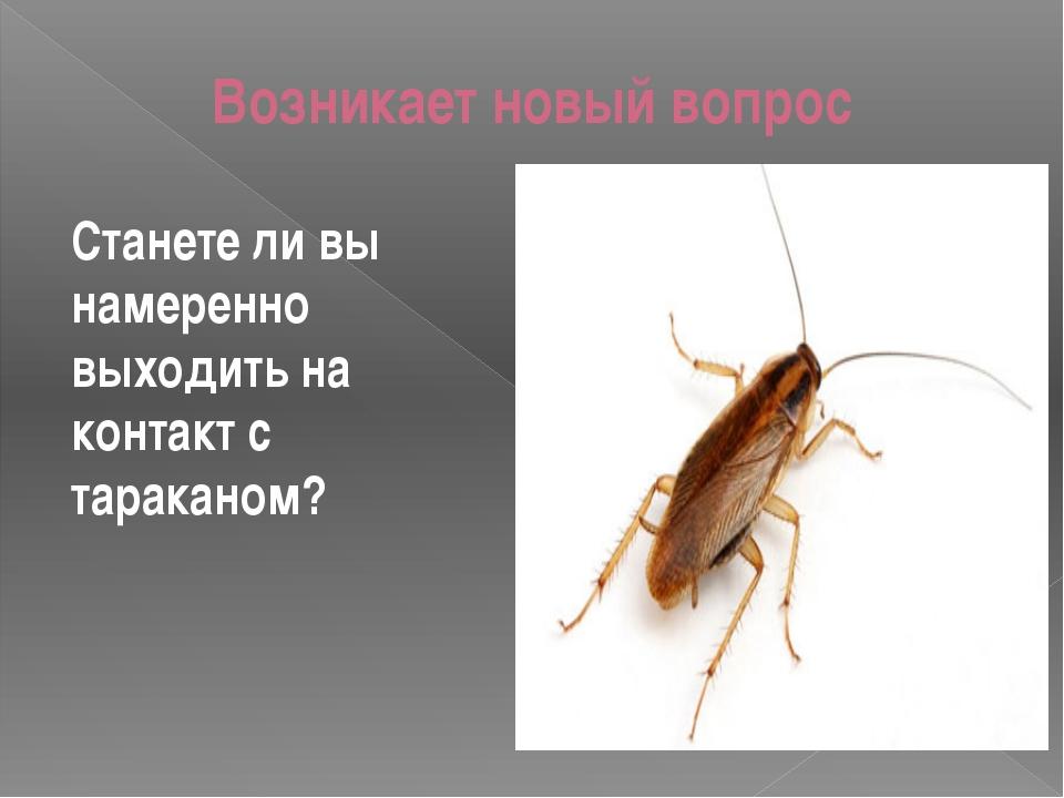 Возникает новый вопрос Станете ли вы намеренно выходить на контакт с тараканом?