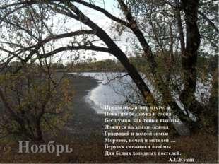 Ноябрь Предзимье, и мир пустоты Понятны без звука и слова. Бесшумно, как тень