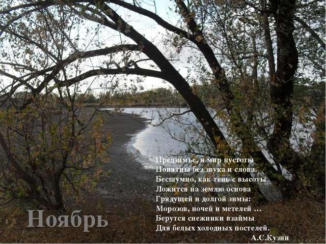 Ноябрь Предзимье, и мир пустоты Понятны без звука и слова. Бесшумно, как тень...