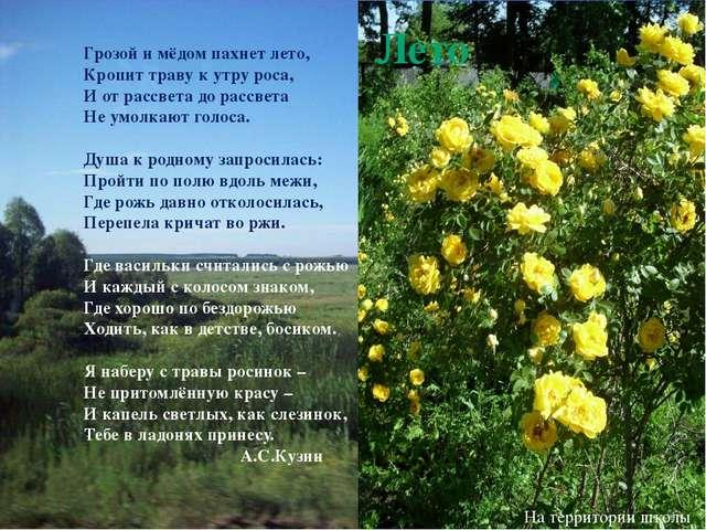 Июнь Радуга. Окраина Святославки Грозой и мёдом пахнет лето, Кропит траву к у...