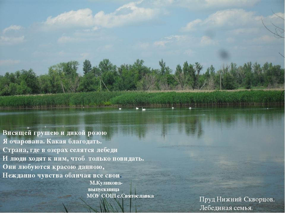 Июль Родные русские картины: Туман, плывущий по реке, И при дороге куст калин...