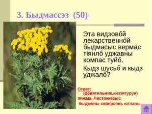 3. Быдмассэз (50) Эта видзовőй лекарственнőй быдмасыс вермас тiянлő уджавны к