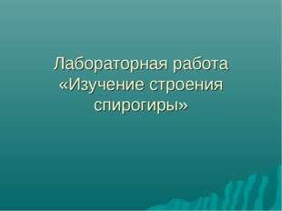 Лабораторная работа «Изучение строения спирогиры»