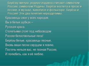 Берёзку милую, родную издавна считают символом России, символом Родины. Берёз