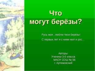 Что могут берёзы? Авторы: Ученики 3-б класса МАОУ СОШ № 56 г. Артемовский Ру