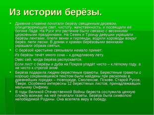 Из истории берёзы. Древние славяне почитали берёзу священным деревом, олицетв