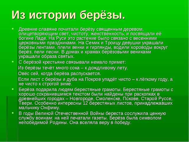 Из истории берёзы. Древние славяне почитали берёзу священным деревом, олицетв...