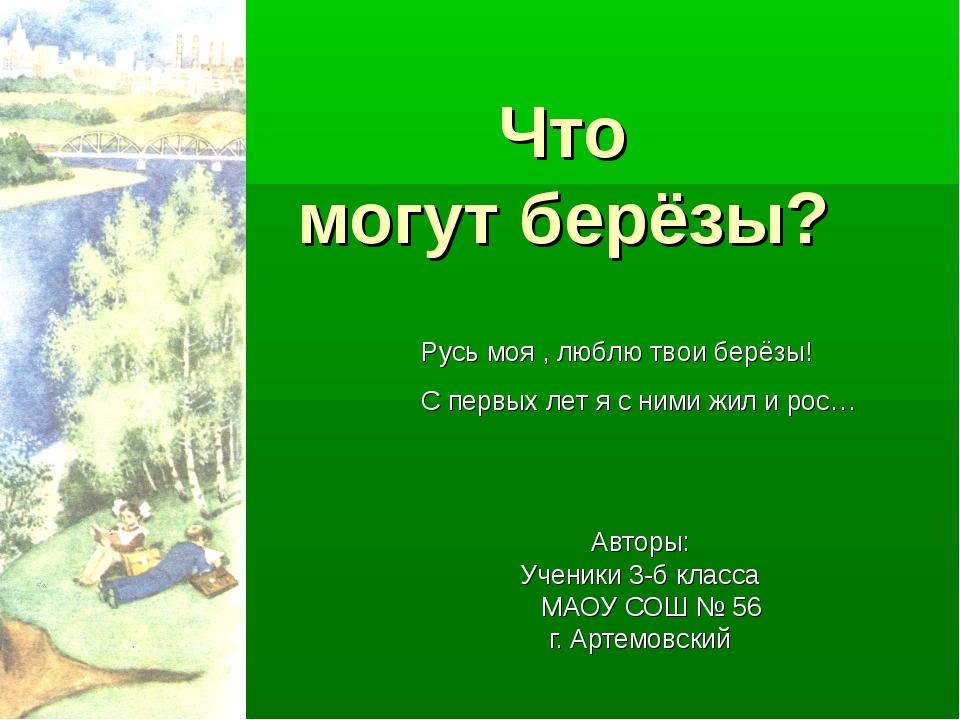 Что могут берёзы? Авторы: Ученики 3-б класса МАОУ СОШ № 56 г. Артемовский Ру...