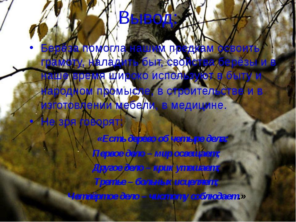 Вывод: Берёза помогла нашим предкам освоить грамоту, наладить быт, свойства б...