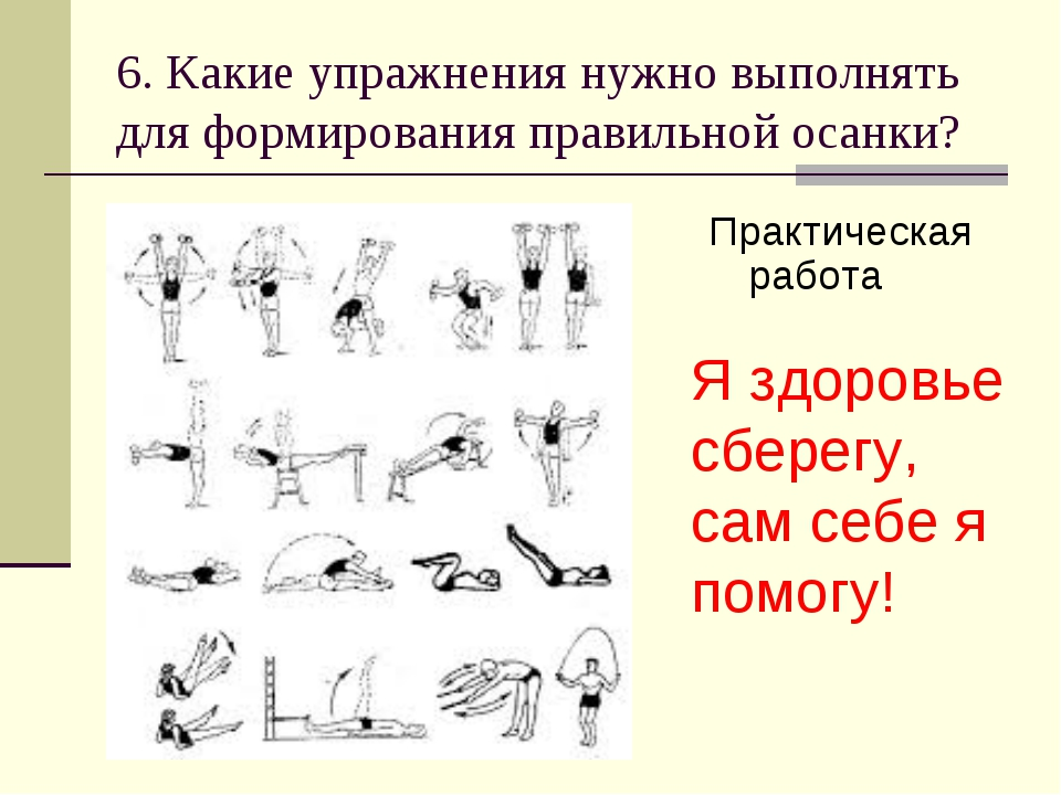 6. Какие упражнения нужно выполнять для формирования правильной осанки? Практ...