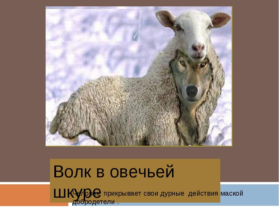 Волк в овечьей шкуре Человек, прикрывает свои дурные действия маской добродет...