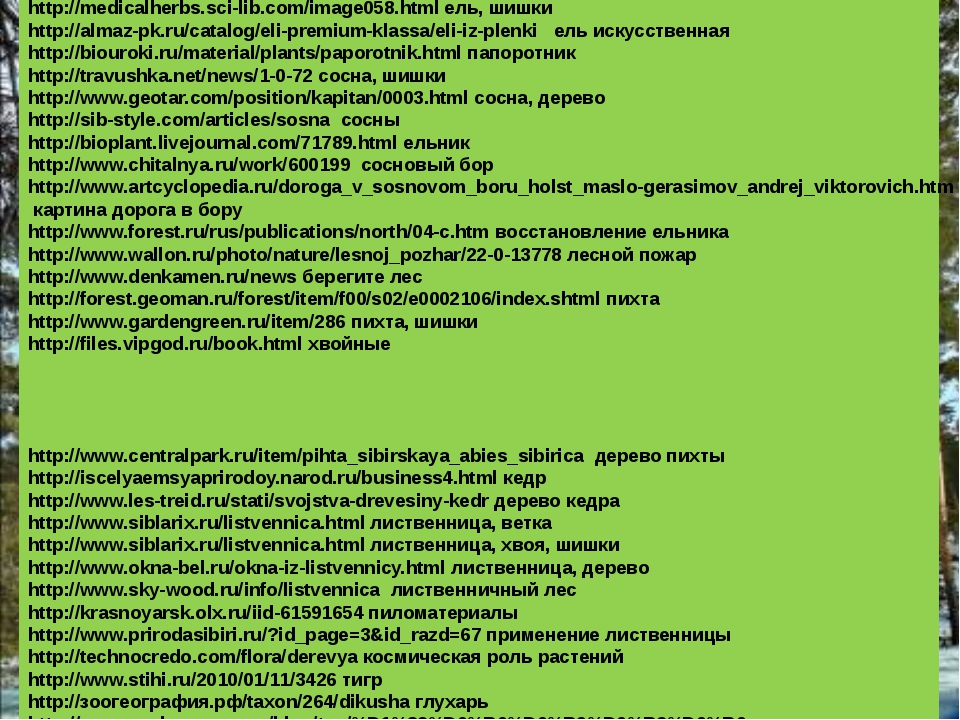 Использовались ресурсы: http://medicalherbs.sci-lib.com/image058.html ель, ши...