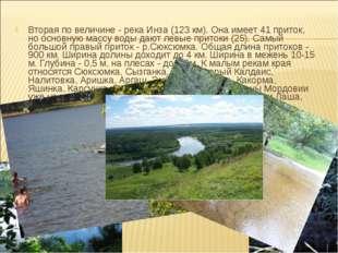 Вторая по величине - река Инза (123 км). Она имеет 41 приток, но основную мас