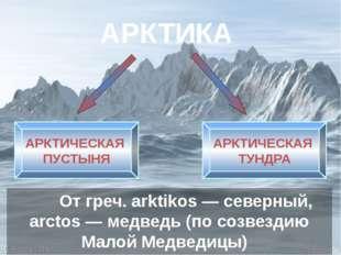 АРКТИКА От греч. arktikos— северный, аrctos— медведь (по созвездию Малой