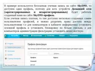 В примере используется бесплатная учетная запись на сайте SkyDNS, то доступен