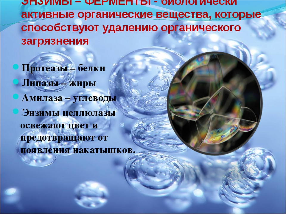 ЭНЗИМЫ – ФЕРМЕНТЫ - биологически активные органические вещества, которые спос...