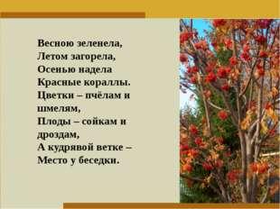 Пункт 1. Пункт 2. Пункт 3. Весною зеленела, Летом загорела, Осенью надела