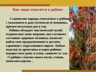 Пункт 1. Пункт 2. Пункт 3. Как люди относятся к рябине Славянские народы отно