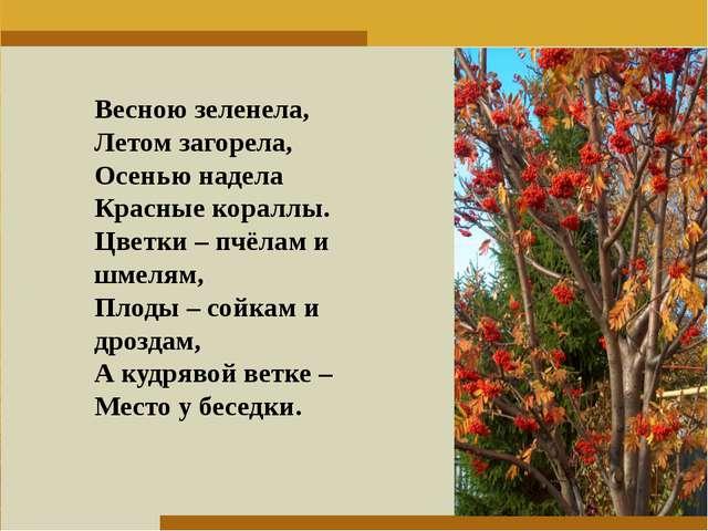 Пункт 1. Пункт 2. Пункт 3. Весною зеленела, Летом загорела, Осенью надела...