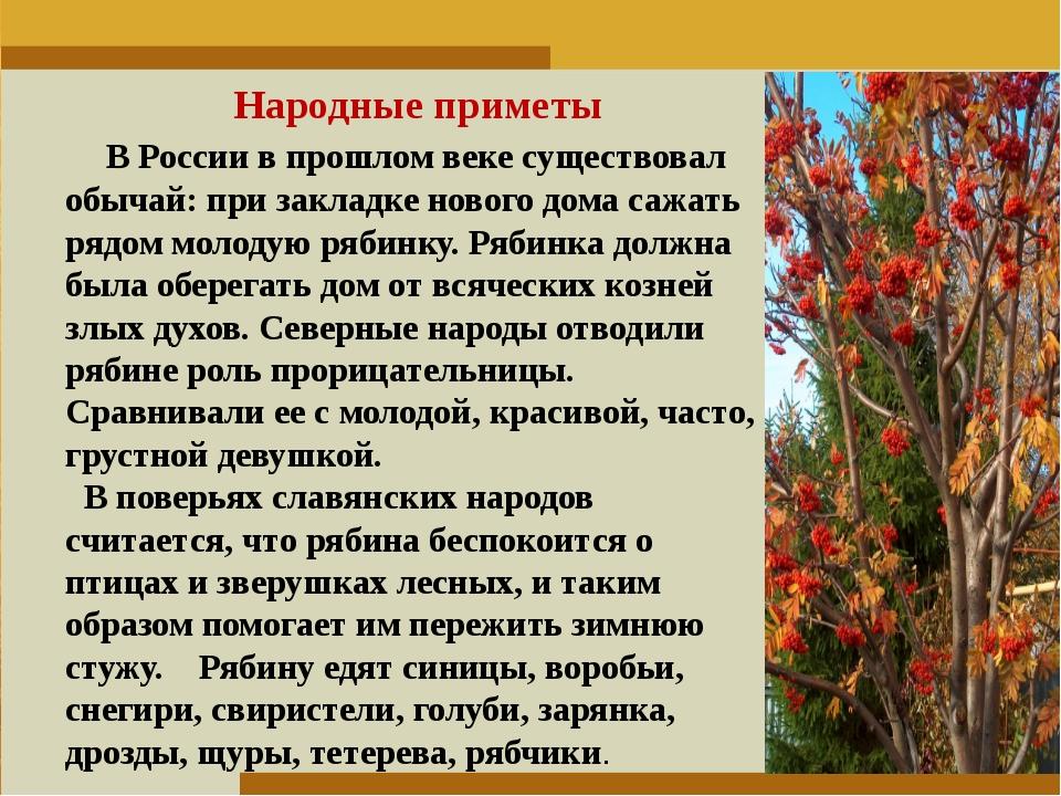 Пункт 1. Пункт 2. Пункт 3. Народные приметы В России в прошлом веке существов...