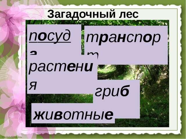 Загадочный лес посуда транспорт растения грибы животные http://linda6035.ucoz...