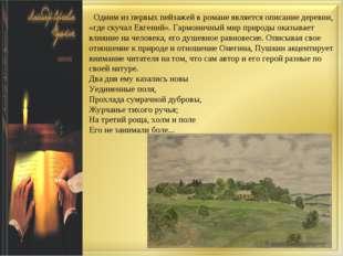Одним из первых пейзажей в романе является описание деревни, «где скучал Евг