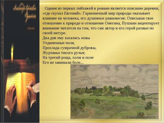 Одним из первых пейзажей в романе является описание деревни, «где скучал Евг...