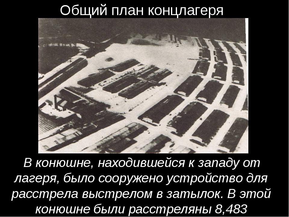 Общий план концлагеря В конюшне, находившейся к западу от лагеря, было соору...