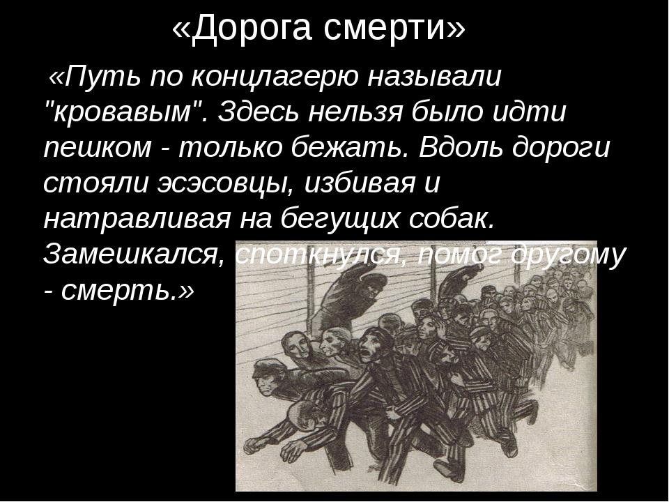 """«Дорога смерти» «Путь по концлагерю называли """"кровавым"""". Здесь нельзя было и..."""