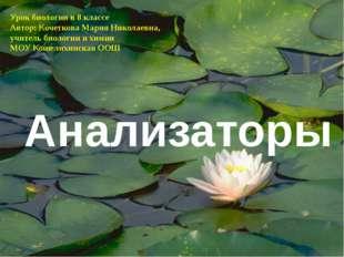 Анализаторы Урок биологии в 8 классе Автор: Кочеткова Мария Николаевна, учите