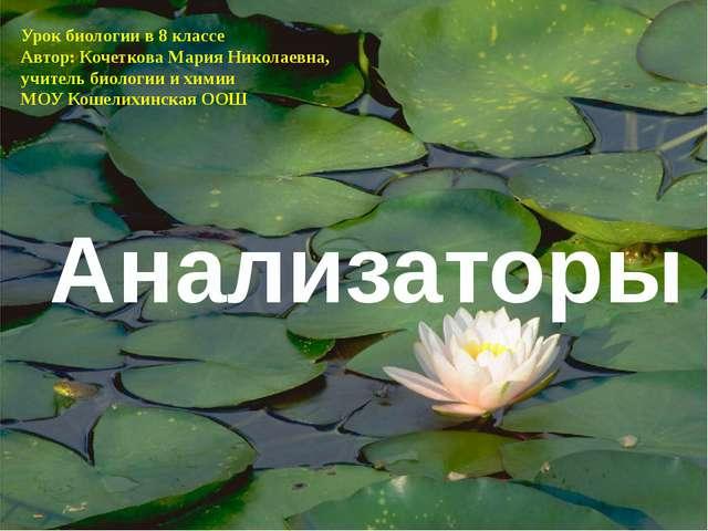Анализаторы Урок биологии в 8 классе Автор: Кочеткова Мария Николаевна, учите...