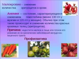 Малокровие - снижение количества эритроцитов в крови. Анемия — состояние, хар