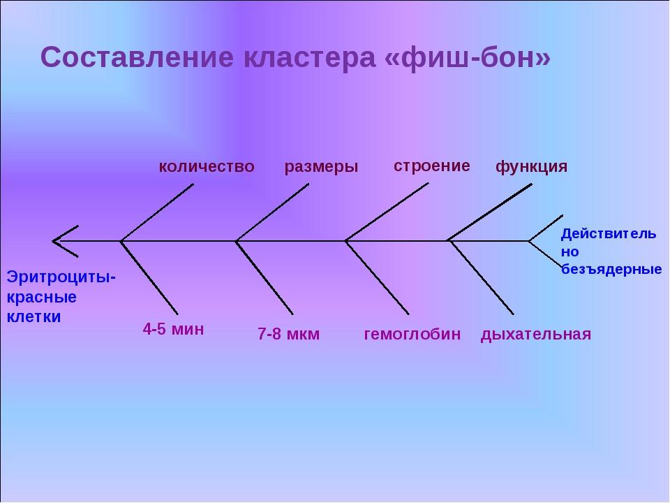 Составление кластера «фиш-бон»