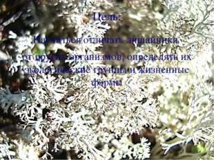 Цель: Научиться отличать лишайники от других организмов, определять их эколог